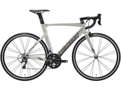 MERIDA Reacto 300 (XS) 47cm Silk Titanium/Dark Silver  click to zoom image